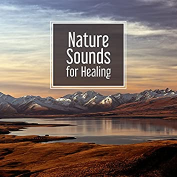 Nature Sounds for Healing – Beautiful Sounds, Relaxing Waves, Easy Listening, Stress Free, New Age Music