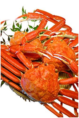 ズワイガニ ボイル姿 ずわいがに 1.5キロ 丸ごと500g×カニ 3杯 【冷凍】 越前宝や カニ鍋 焼き蟹 かに