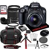 Canon EOS 2000D Rebel T7 DSLR Camera w/Canon EF-S 18-55mm Zoom Lens, 64GB Memory Card, Camera Case (20 Piece Bundle)