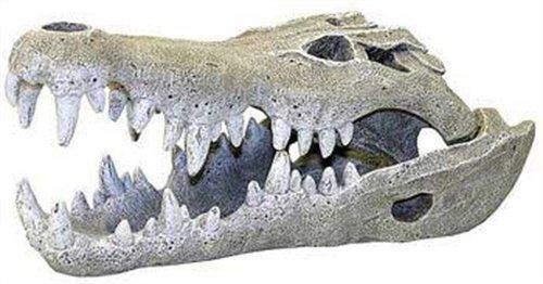 Rosewood 91355 Aquarium-Deko Nilkrokodil-Schädel - Large