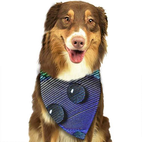 Pavo Real Pluma Primer Plano Perro Bandana Collares Triángulo Pañuelo Baberos Bufandas Accesorios Mascotas Gatos y Perritos Bebé Toalla de Saliva