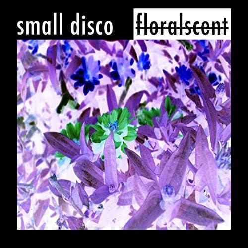 Small Disco