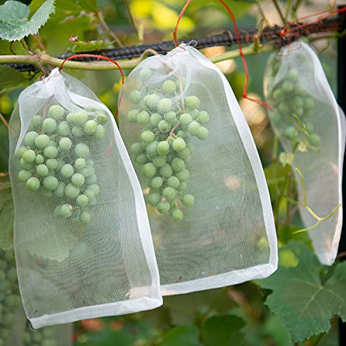 COVELL Bolsa de malla para jardín, fruta, con cordón de protección, uvas, transpirable, de nailon, tamaño: 15 x 25 cm, para evitar mosquitos y pájaros (20 x 30 cm)