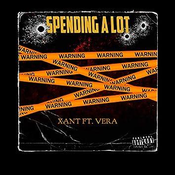 Spending a Lot