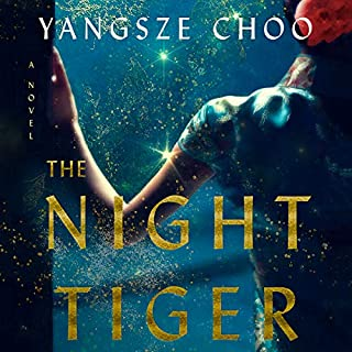 The Night Tiger cover art