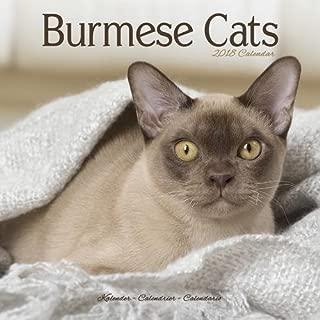 Best burmese cat calendar 2018 Reviews