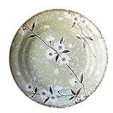 aedouqhr Platos de cerámica para Ensalada, para Ensalada, Aperitivo, microondas y lavavajillas...