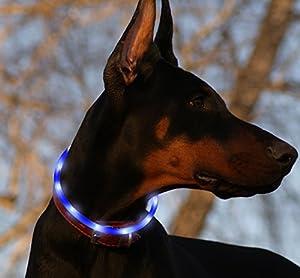 Collier pour chien LED rechargeable USB en silicone réglable lumineux de sécurité résistant à l'eau Collier avec lumière clignotante pour animaux domestiques Chiens par Vizpet