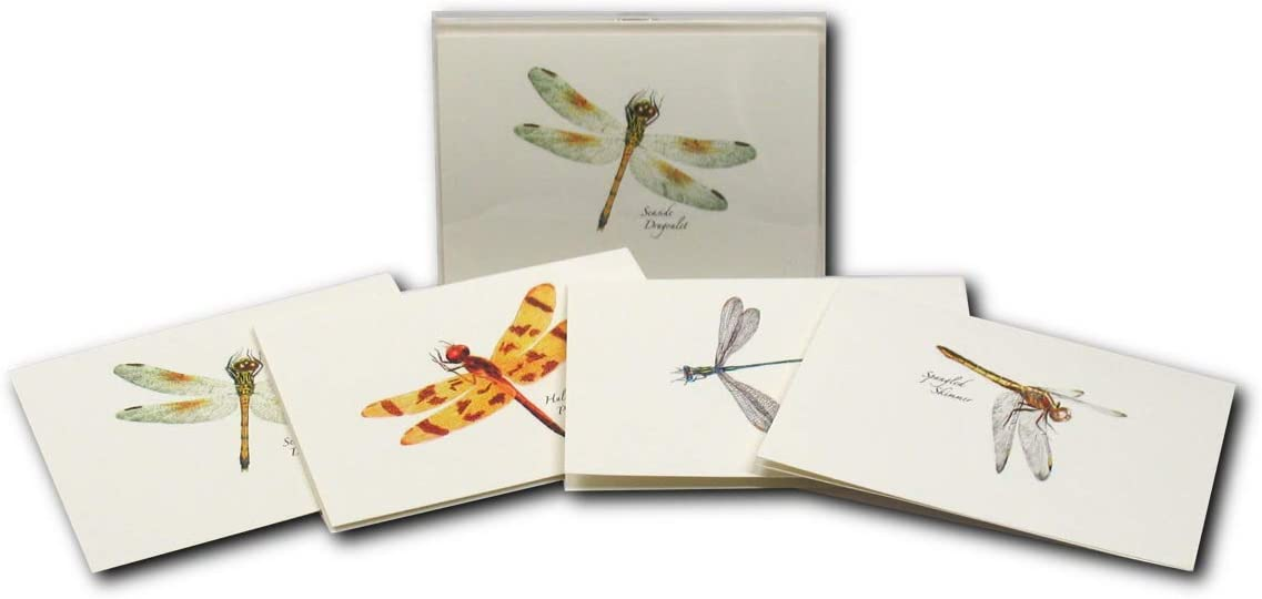 Set of 8 Thank You Card Set Blank Dragonfly Thank You Note Cards Thank You Notecards Dragonfly Thank You Cards