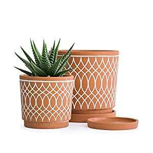 Set of 2, Terracotta Plant pots, Line Pattern Design, 4 Inch and 6 Inch, Planter Pot with Drainage Hole and Tray, Terracotta/White, A-958-3-1