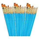Sooez 30Pcs Art Paint Brushes Set, Round Pointed Tip Nylon Hair Art Brushes for Acrylic Oil Watercolor, 10 Different Sizes for Body Nail Face Painting, Adult Kids Drawing Arts Crafts Supplies
