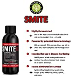 SMITE Spider Mite Killer Supreme Growers, All Natural Pesticide...