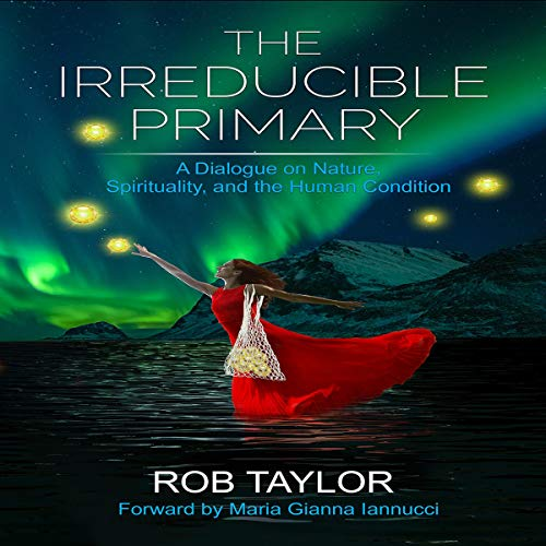 The Irreducible Primary Audiobook By Rob Taylor cover art