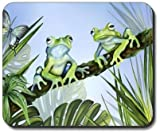 Yanteng El Caso de Danly Hizo - Las Ranas Verdes Alfombrilla de ratón