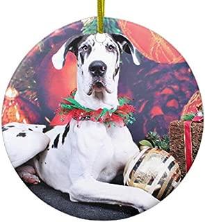 Lplpol Christmas Harlequin Great Dane Baron Ceramic Ornament for Gift Commemoration Day