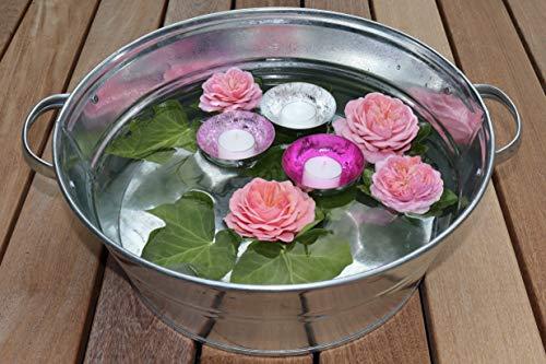 terracotta24 Zinkwanne als Miniteich Set Rose inkl. 3 Schwimmschalen für Teelichter, Dekoration Teich für Garten und Balkon (Rose)
