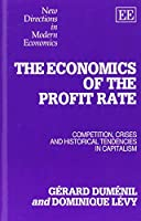 The Economics of the Profit Rate: Competition, Crises and Historical Tendencies in Capitalism (New Directions in Modern Economics Series)