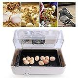 EBTOOLS Incubatrice Automatica di Uova Incubator Egg, Digital Pollo Uovo Incubatrice con Display LCD e Controllo della Temperatura per 24 Uova di Gallina, Quaglie e Uccelli
