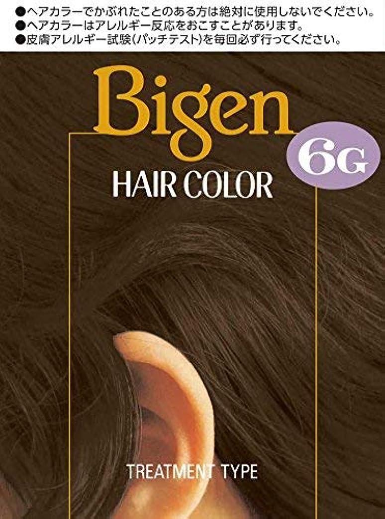 呪われたサイクル凍結ホーユー ビゲン ヘアカラー 6G (自然な褐色) 40mL+40mL ×6個