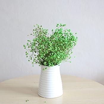 VANCORE 花瓶 フラワーベース 一輪挿し 陶器 白