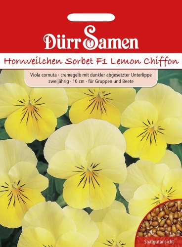 Dürr Samen 1437 Hornveilchen Sorbet F1 Lemon Chiffon (Hornveilchensamen)