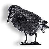 KADAX Schwarz Rabe, Taubenabwehr und Taubenschreck aus Kunststoff, Vogelabwehr, natürliche Schädlingsbekämpfung, Schutz vor lästigen Vögeln
