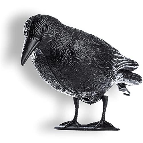 KADAX Cuervo negro, Ahuyentador de Palomas, Repelente de palomas, Repelente de Pájaros, Protección contra plagas de pájaros y palomas