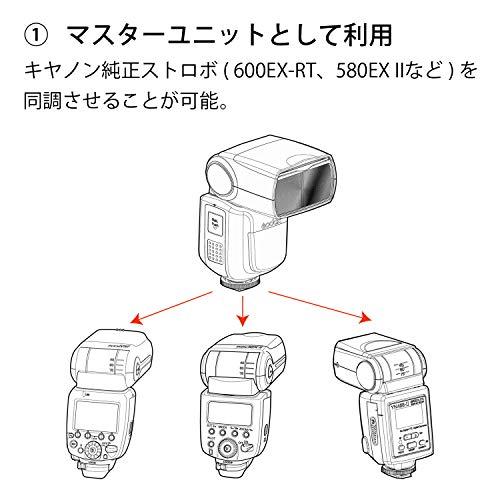 GODOX(ゴドックス)『VING(V860Ⅱ)』
