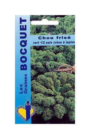 Les Graines Bocquet - Graines De Chou Frisé Vert Demi Nain (chou kale)- Graines Potagères À Semer - Sachet De 3Grammes