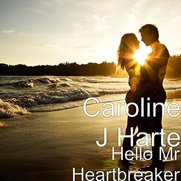 Hello Mr Heartbreaker
