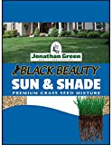 Jonathan Green Shade Grass Seeds