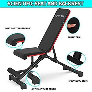 GOFLYSHINE Flat Bench Adjustable Weight Bench for Home Exercise Bench Strength Training Becnches Multi-Position Workout Bench for Gym Fitness Full Body Weight Lifting Training (LY-Dumbbell Bench-6)