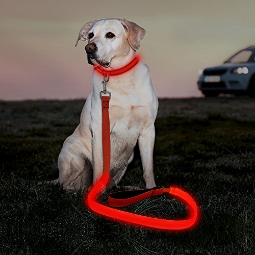 Illumifun LED Dog Leash, USB Rechargeable Light Up Dog Lead, 47.2inch Nylon Glowing Pet Leash Makes Your Dog Visible& Safe at Night(Red)