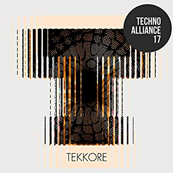 Techno Alliance 17