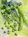 Posterlounge Cuadro de PVC 60 x 80 cm: Peas de Jitka Krause