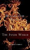 The Inner World (A Wonderful World Book 1) (English Edition)