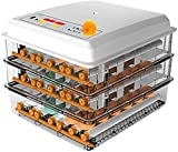 N&W Egg Incubator 176 Eggs Fully Digital Automatic Hatcher Poultry Hatcher with Egg Turning Temp Control LED Candling Lamp for Hatching Chicken Duck Goose Quail Birds Turkey (Types : Dual Power s