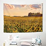 Knowikonwn Pintura al óleo, girasol, para decoración de fiestas, fondo fotográfico, blanco, 149,9 x 149,9 cm