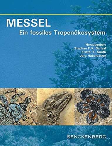 MESSEL - Ein fossiles Tropenökosystem (Senckenberg-Buch)