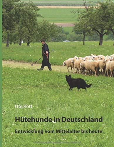 Deutsche Hütehunde: Entwicklung vom Mittelalter bis heute