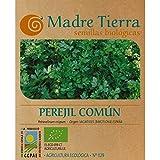 Madre Tierra - Semillas Ecológicas de Perejil Comun - ( Petroselenum Crispum) Origen Barcelona - 1 Gramo