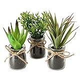 Spetebo Deko Kunstpflanze mit Tragetasche klein - 3er Set - Tisch Deko Pflanze künstlich Kunstblume grün