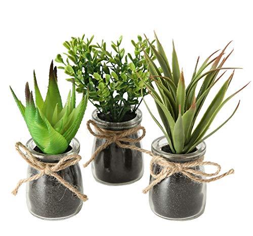 Spetebo Kunstpflanze im Glas klein - 3er Set - Sukkulenten Set Tischdeko Büro Pflanze künstlich grün