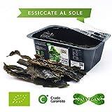 CiboCrudo Alghe Kombu Bio - 50g - Essiccate al Sole Ricche di Fibre e...