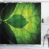 ABAKUHAUS Grün Duschvorhang, Brazilian Baum Blatt Eco, Bakterie Schimmel Resistent inkl. 12 Haken Waschbar Stielvoller Digitaldruck, 175 x 220 cm, Olive & Dunkelgrün