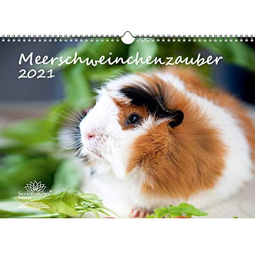 Meerschweinchenzauber DIN A3 Kalender für 2021 Meerschweinchen - Seelenzauber