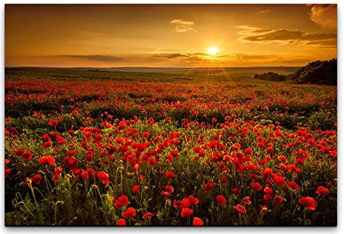 bestforhome-120x80cm Leinwandbild Sommerwiese Mohnblumen beim blühen auf Feld (Mohnblumenfeld) bei Sonnenuntergang. Wolken am Himmel Leinwand auf Holzrahmen