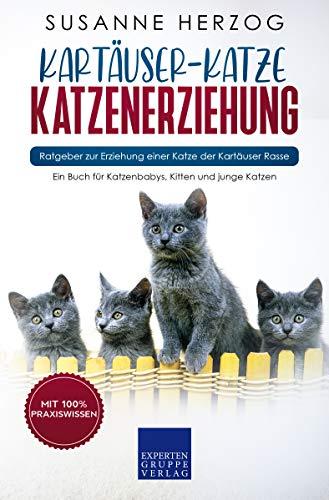 Kartäuser-Katze Katzenerziehung - Ratgeber zur Erziehung einer Katze der Kartäuser Rasse: Ein Buch für Katzenbabys, Kitten und junge Katzen