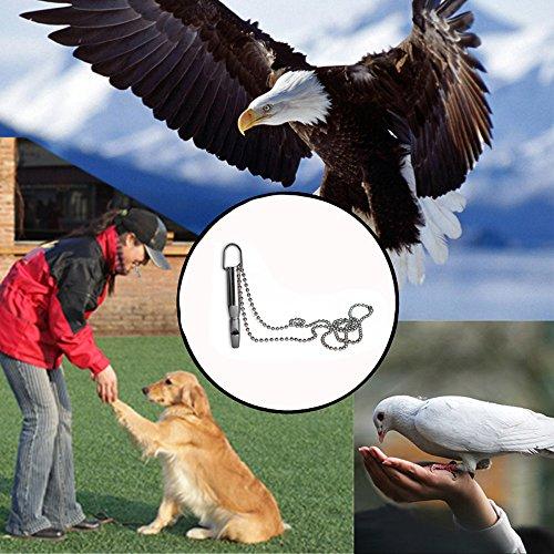 hahuha Toy Haustier Hund Training Pfeife Ultraschall Katze Vogel Clicker Bark Control Gehorsam