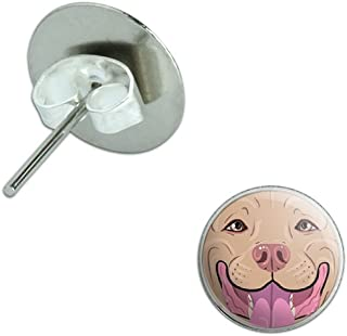 Blue Fawn Pit Bull Face - Pitbull Dog Pet Novelty Silver Plated Stud Earrings